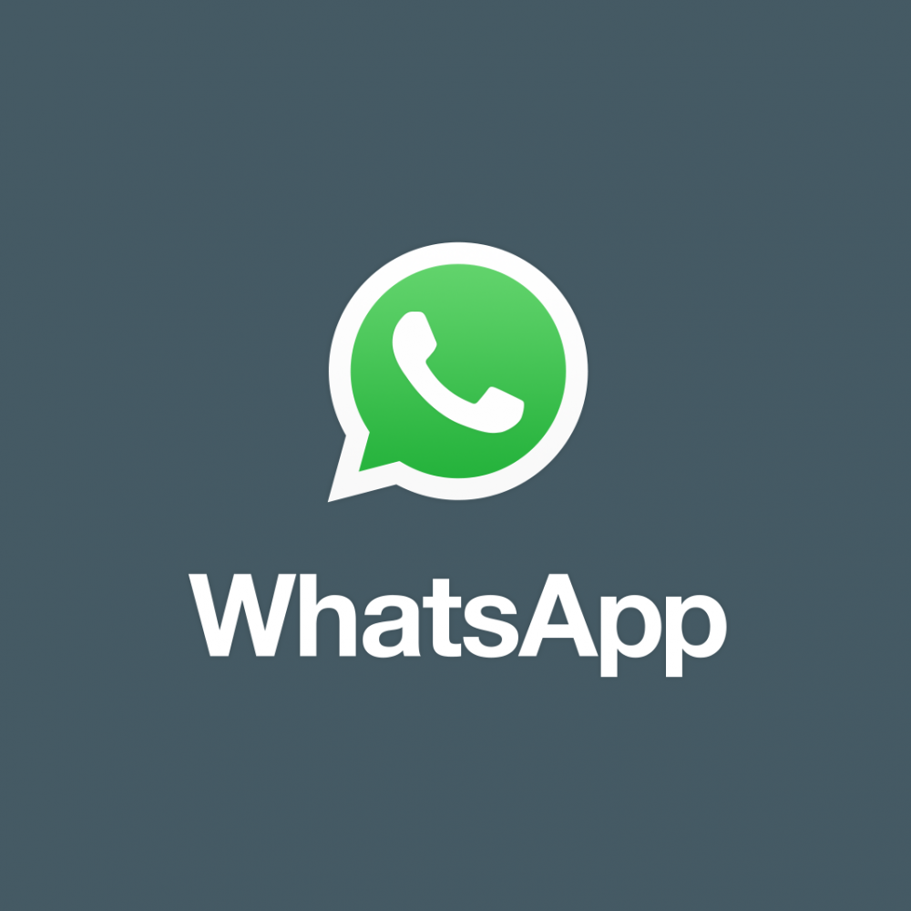 Whatsapp Talent 4 Money